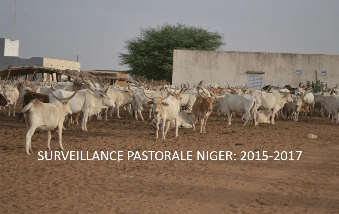 Surveillance_Pastorale